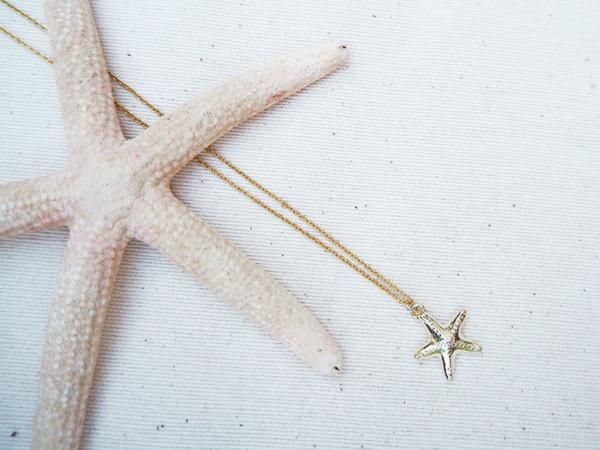 Uaia Estrella de mar